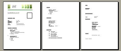 bewerbungsanschreiben 1 bewerbungsschreiben 2 deckblatt bewerbung lebenslauf bewerbungsanschreiben 3 bewerbungsschreiben vorlage lebenslauf vorlage - Bewerbung Schreiben Online